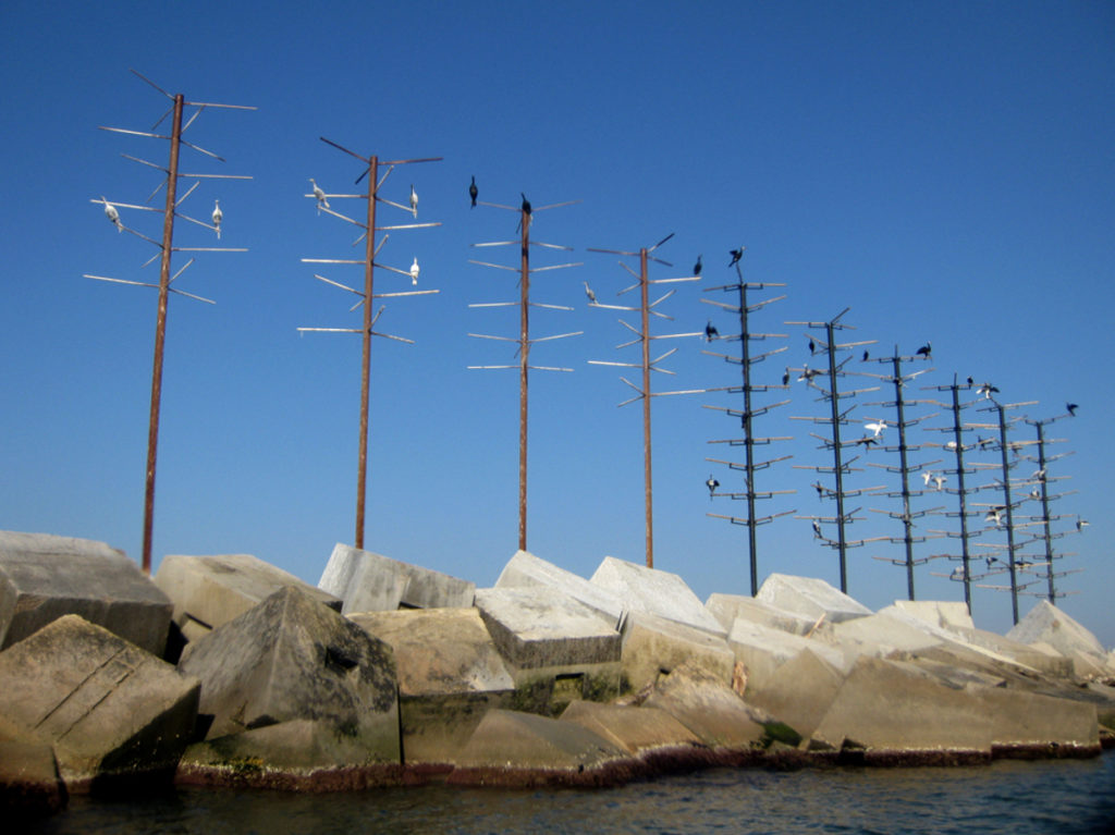 Para el traslado se testaron varios tipos de estructuras que las aves pudieran convertir en su hogar. [Imagen de Port de Barcelona]